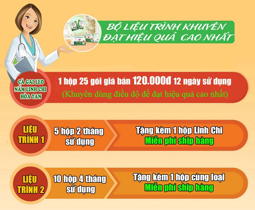 BỘ LIỆU TRÌNH CÀ GAI LEO LINH CHI HÒA TAN