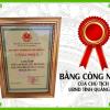 giay-chung-nhan-cao-che-vang-dinh-son