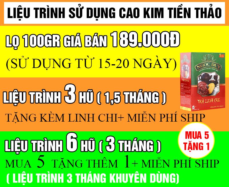 LIEU-TRINH-SU-DUNG-CAO-KIM-TIEN-THAO